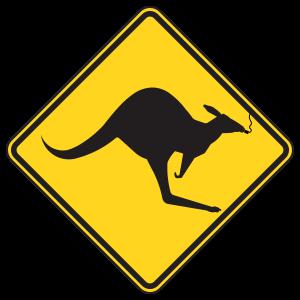 Smoking Kangaroo